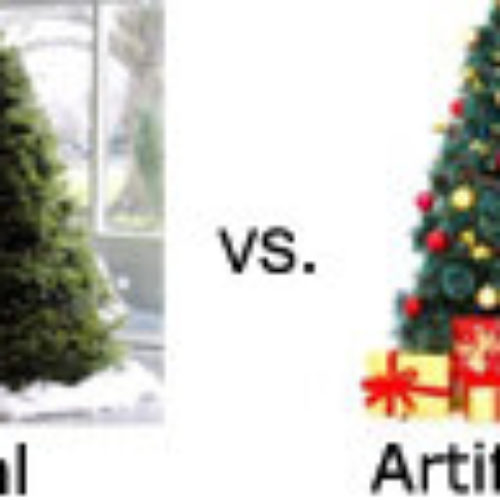 Real vs. Artificial Christmas Tree