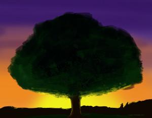 American Chestnut illustration