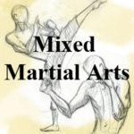 mixed-martial-arts-small