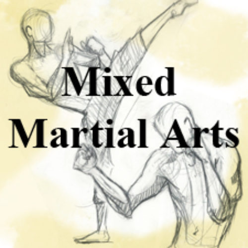 The Birthplace of Mixed Martial Arts Matches