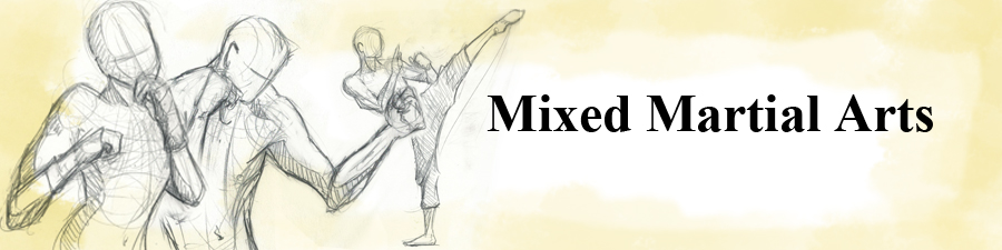 mixed-martial-arts
