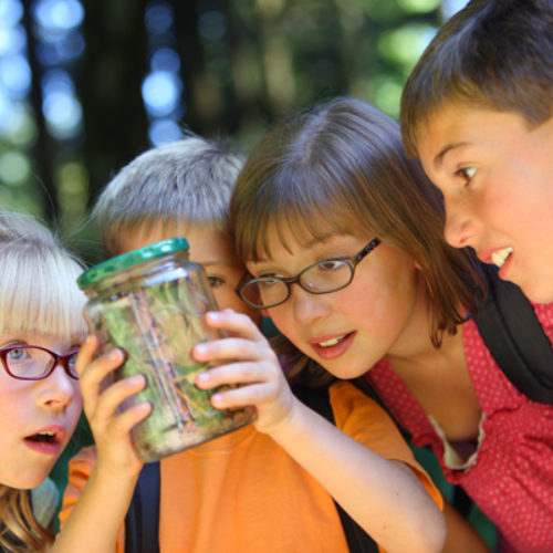 How to Choose the Best Summer Camp