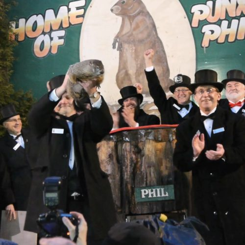 Punxsutawney Phil-The Real Party Animal